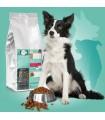Croquettes pour chiens taille moyenne Vet Saveur