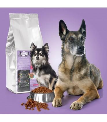 Croquettes pour chien Senior Vet Saveur